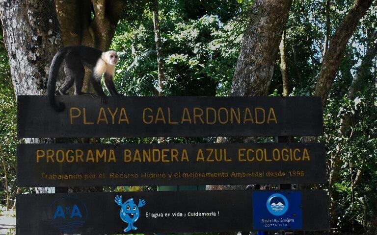parque nacional manuel antonio en costa rica